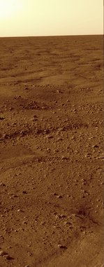 Mars's surface from Phoenix