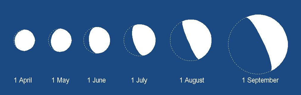 Venus diameter